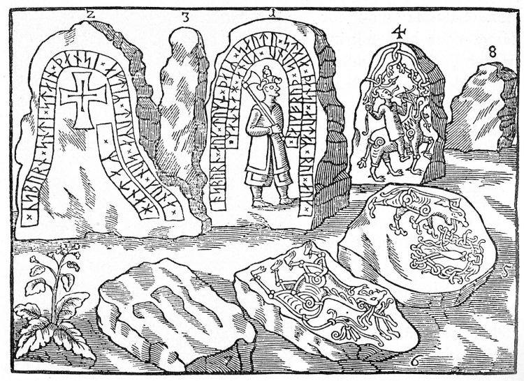 Ole Worm's etching of the Hunnestad stones